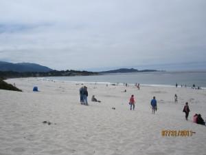 Carmel Dog Friendly Beach