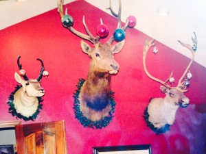 Elk decorated at Christmas