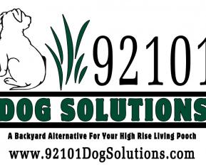 92101-ds-logo